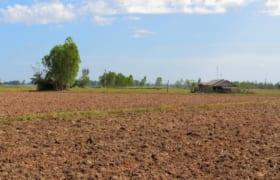 Hạn mức giao đất, công nhận quyền sử dụng đất, chuyển quyền sử dụng đất